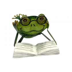 Frog Reading 12304